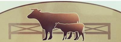 Logo Kigle